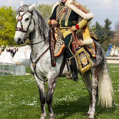 CHASSEUR A CHEVAL