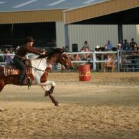 Barrel Racing et Pole Bending
