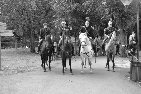 L'arrivée des troupes nb